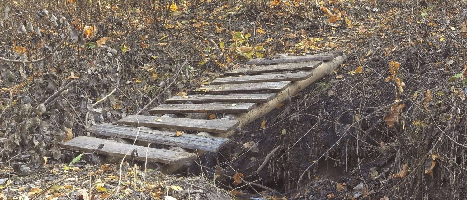 Wooden steps at a park creating a makeshift bridge. Not the aforementioned stairs. [Shutterstock - StAlUr]
