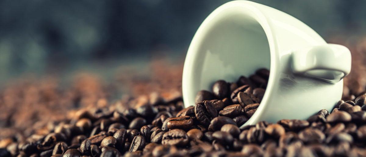 Coffee (Credit: Shutterstock)