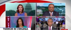 MSNBC's Ruhle Cites Incorrect Terror Statistic [VIDEO]