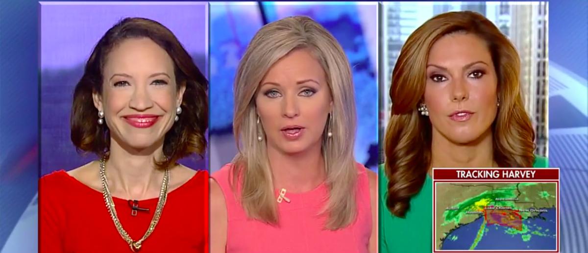 Screen Shot Lisa Boothe (Fox News: Aug 28, 2017)