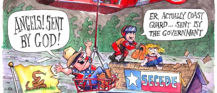 Screen Shot Politico Cartoon (Credit: Matt Wuerker)