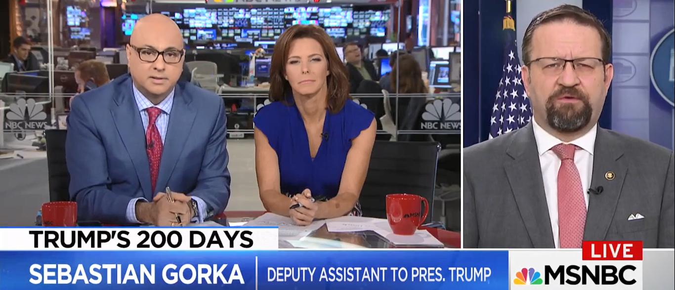 Sebastian Gorka MSNBC 08-08-17