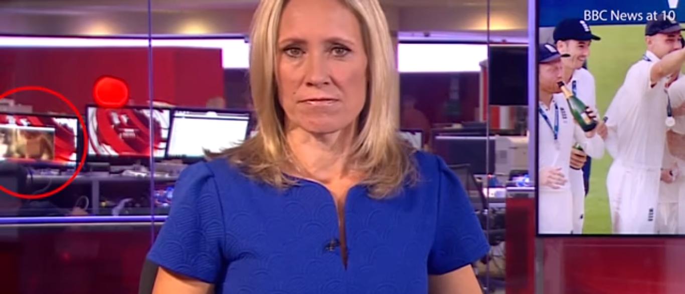 BBC News 08-08-17