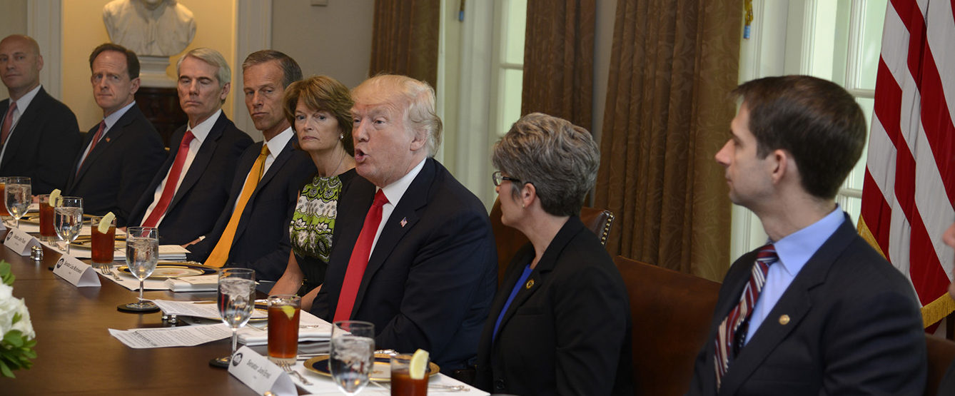President Donald Trump hosts a working lunch with members of Congress, including Sen. Tom Cotton (R-AR) (R), Sen. Joni Ernst (R-IA) (2nd, R) and (L-R) White House Director of Legislative Affairs Mark Short, Sen. Pat Toomey (R-PA), Sen. Rob Portman (R-OH), Sen. John Thune (R-SD) and Sen. Lisa Murkowski (R-AK) at the White House June 13, 2017, in Washington, DC. Trump and lawmakers discussed administration plans to reform the Affordable Care Act, also known as Obamacare. (Photo by Mike Theiler-Pool/Getty Images)