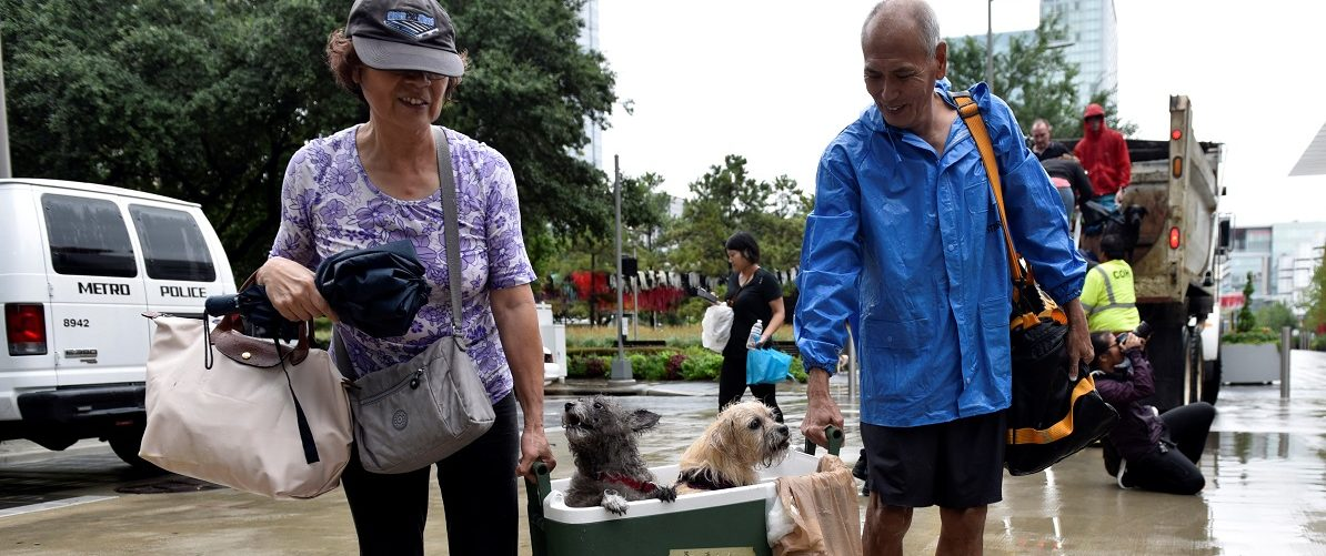 A couple of evacuees carry their dogs into the the George R. Brown Convention Center after Hurricane Harvey inundated the Texas Gulf coast with rain causing widespread flooding