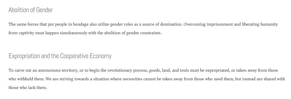 Revolutionary Abolitionist Movement (Screenshot: RAM website)