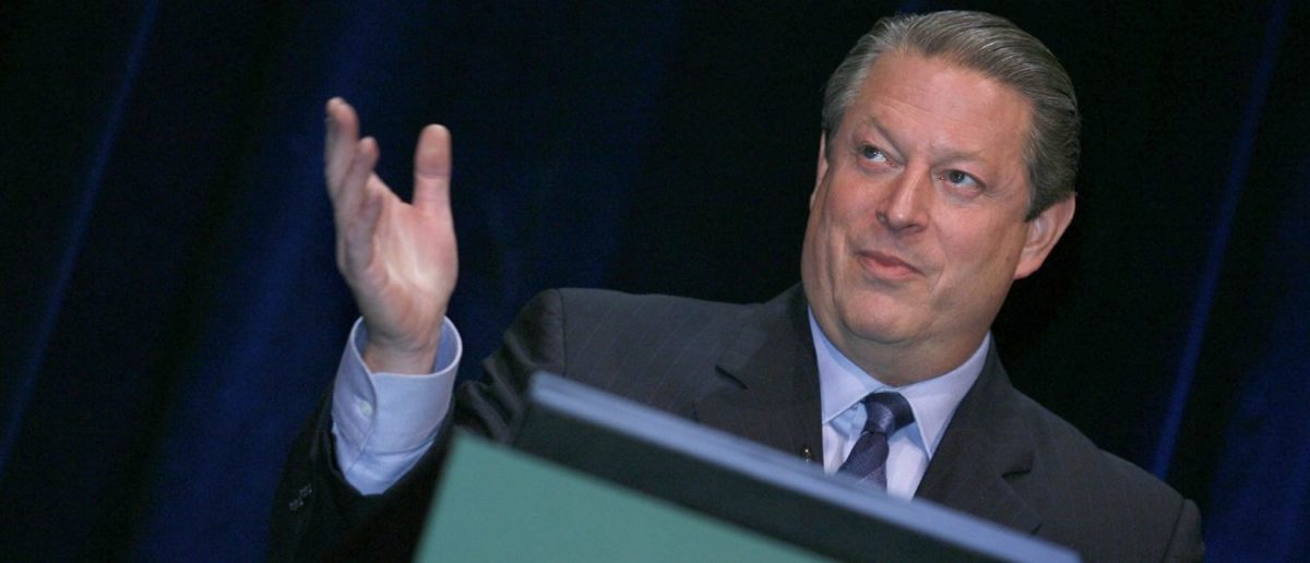Former US Vice-President Al Gore (Shutterstock/stocklight)