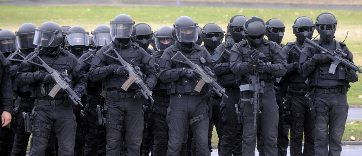 SWAT (Credit: Shutterstock)