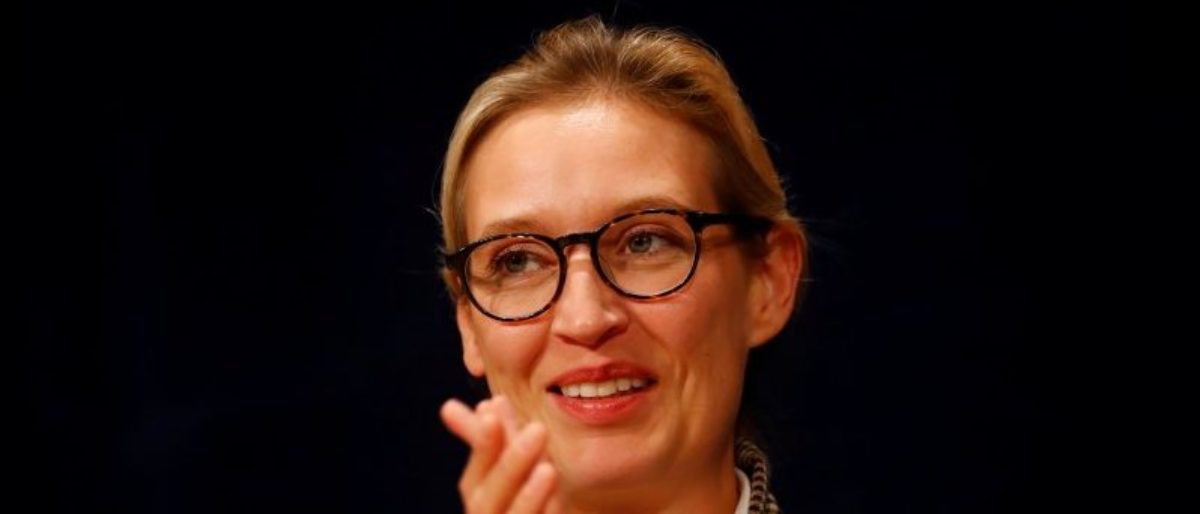 Alice Weidel of Germany's far-right Alternative for Deutschland (AfD) is seen during a campaign in Pforzheim, Germany September 6, 2017. REUTERS/Kai Pfaffenbach
