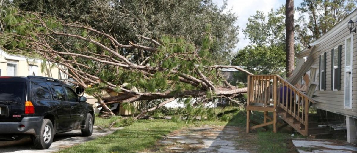 A home is completely destroyed, cut in half by a falling tree, while another is mostly unscathed at a mobile home park in the wake of Hurricane Irma in Kissimmee