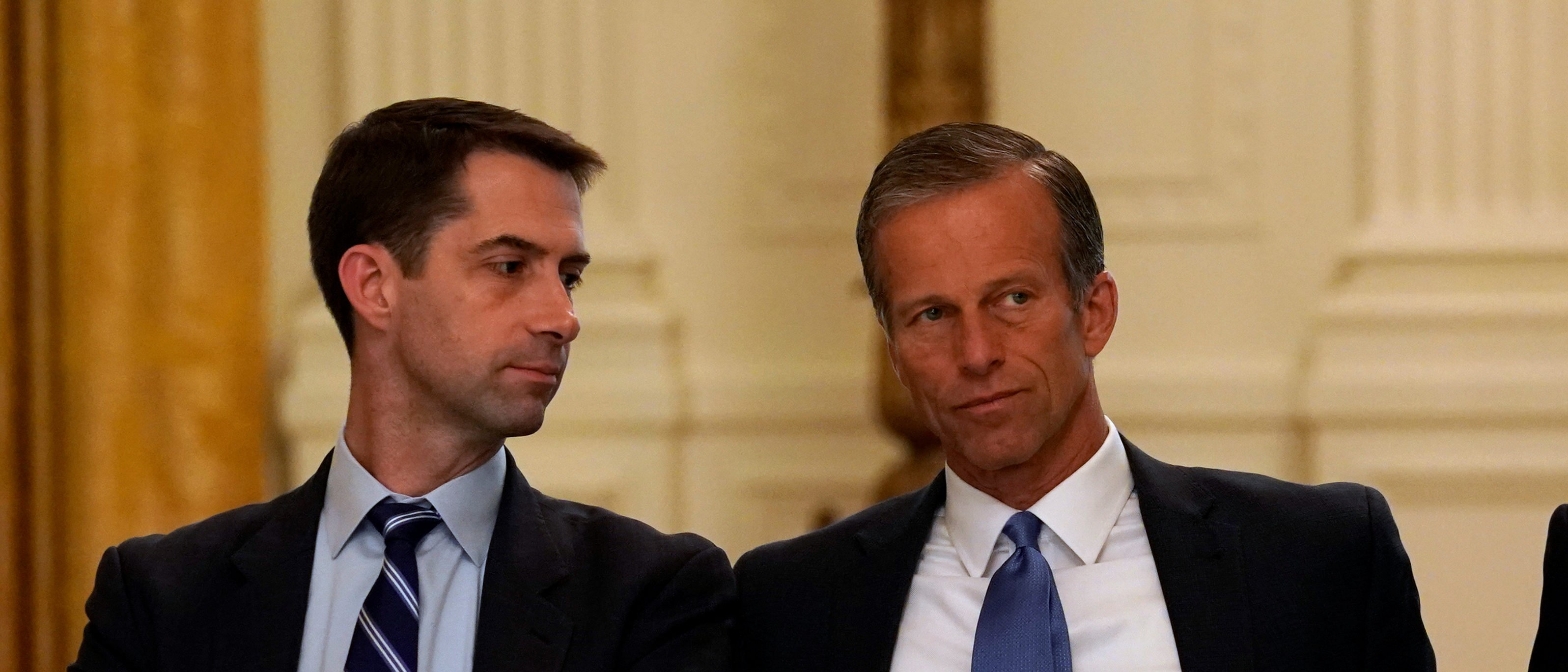 Senators Tom Cotton, L, (R-AR) John Thune, C, (R-SD) and Senate Majority Leader Mitch McConnell, R, attend a meeting called by U.S. President Donald Trump on healthcare in the East Room of the White House in Washington, U.S., June 27, 2017. REUTERS/Kevin Lamarque