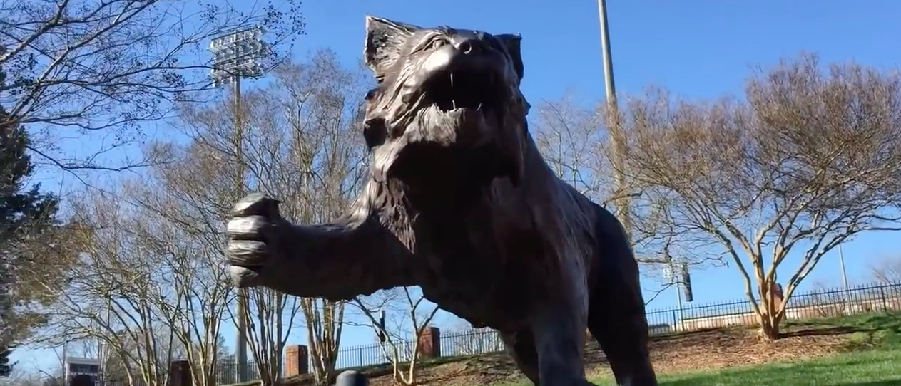 Davidson wildcat mascot. (Youtube Screenshot/TyriqTV)