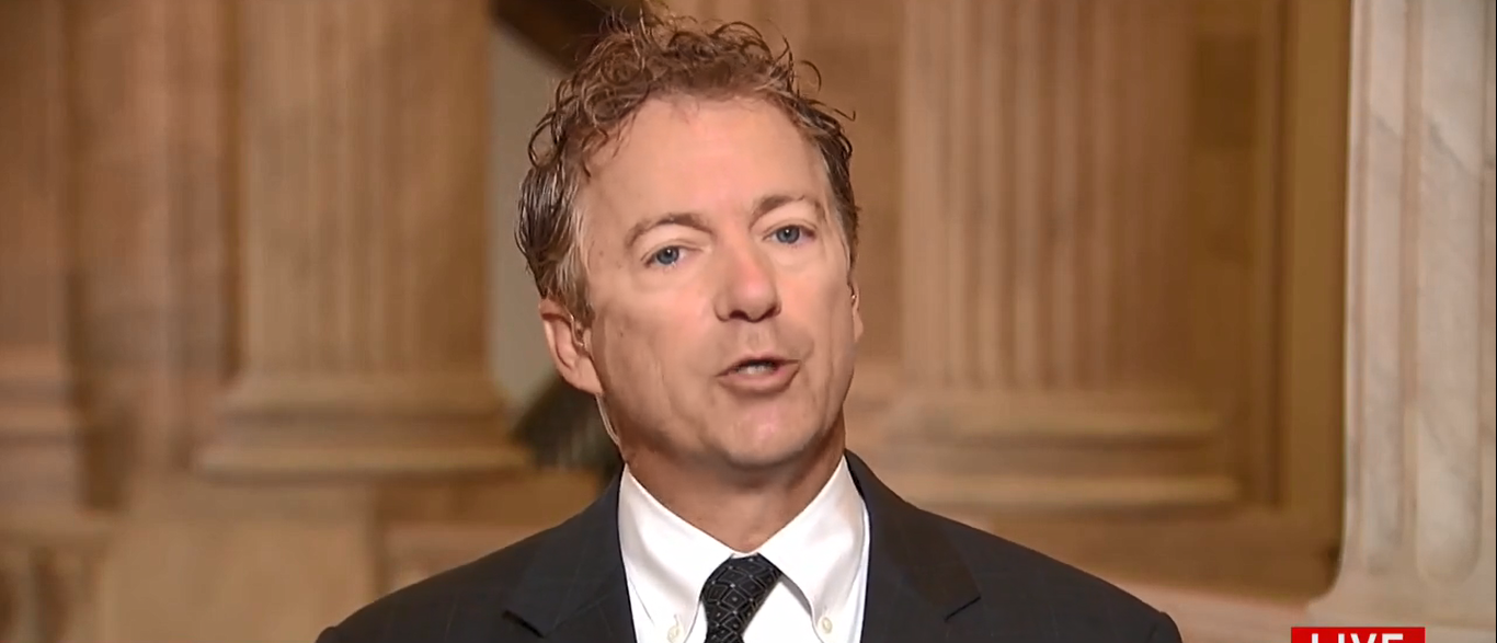 Rand Paul (Scrrenshot/MSNBC)
