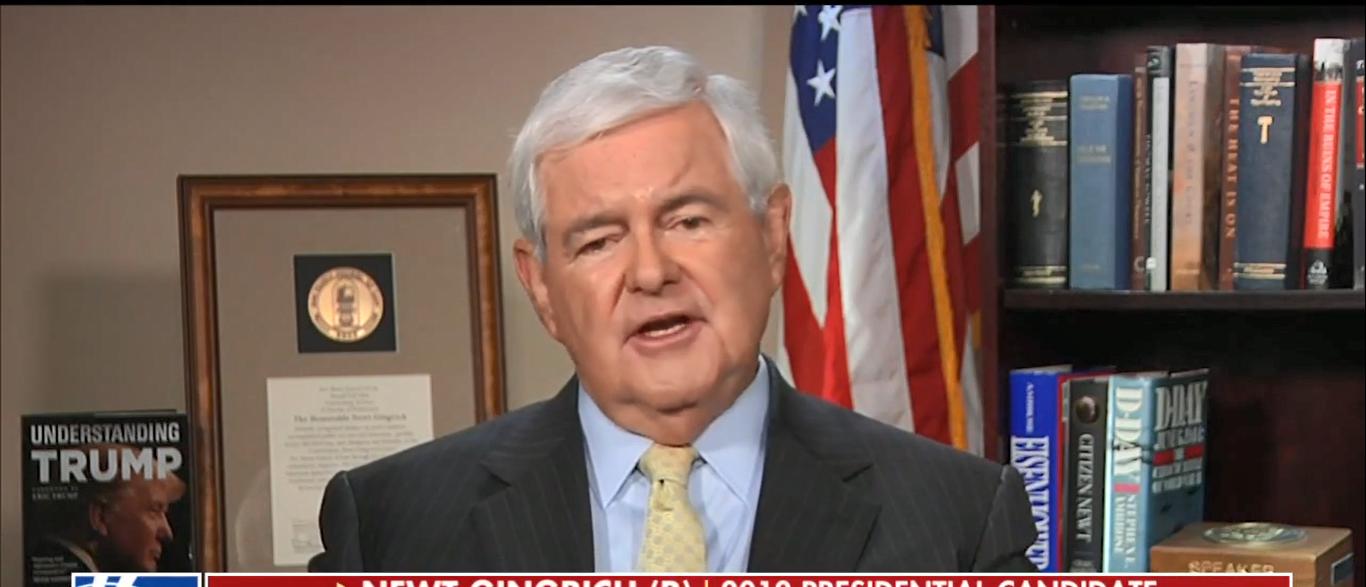 Newt Gingrich (Screenshot/Fox News)