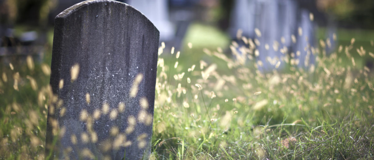 Shutterstock/ Tombstone and graves in an ancient church graveyard gravetombstonegraveyardgravestoneheadstonedarkoldblankhalloweencreepychurchgriefphotographystoneancientburialburiedceltic crosscemeterychapelchurchyardcollapsedcolourcrossdeaddeathdramaticgothicgreenhauntedholy crosshorizontalmarblememorialmoodyold ruinovercastplace of burialreligionscaryskysolitudespiritualityspookystormtombShow more