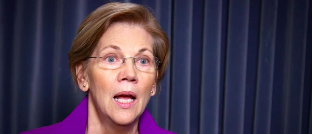 Elizabeth Warren shares experiences of harassment in light of Harvey Weinstein allegations. (Image: Screengrab of NBC/MeetThePress)