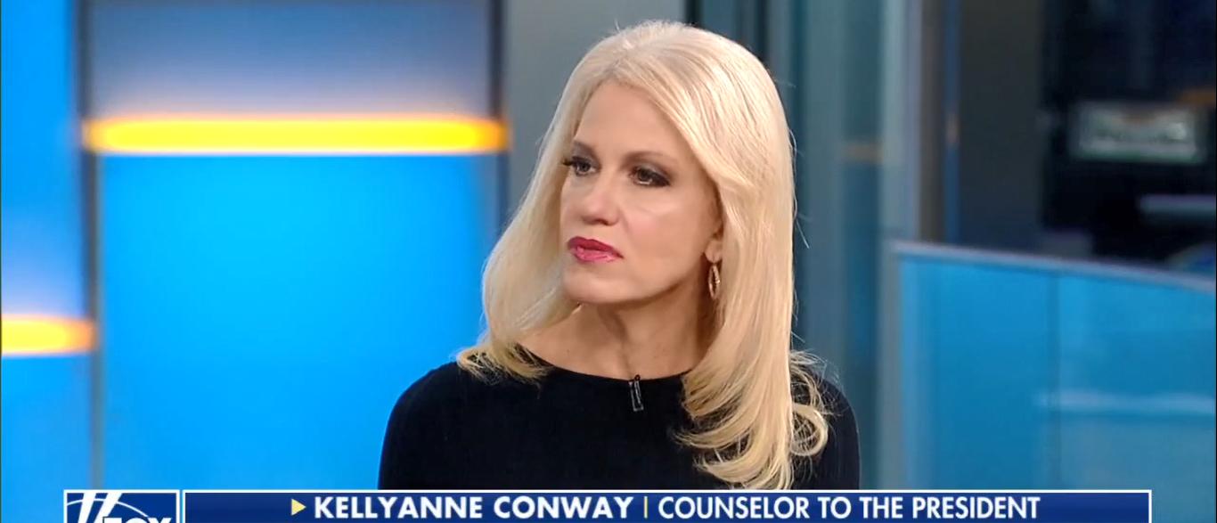 Kellyanne Conway Slams Dems On Immigration 10-09-17 (Screenshot-Fox News)