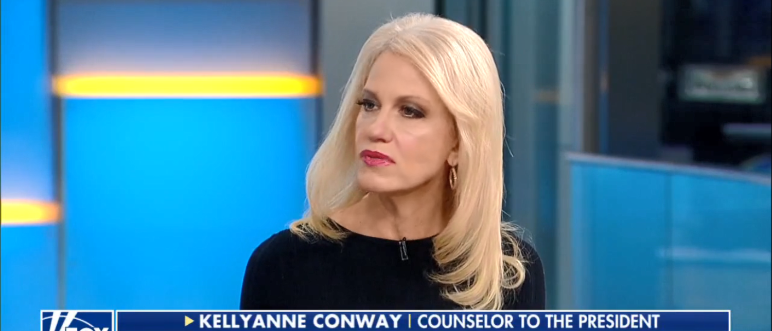 Kellyanne Conway Slams Dems On Immigration 10-09-17 (Screenshot-Fox News)