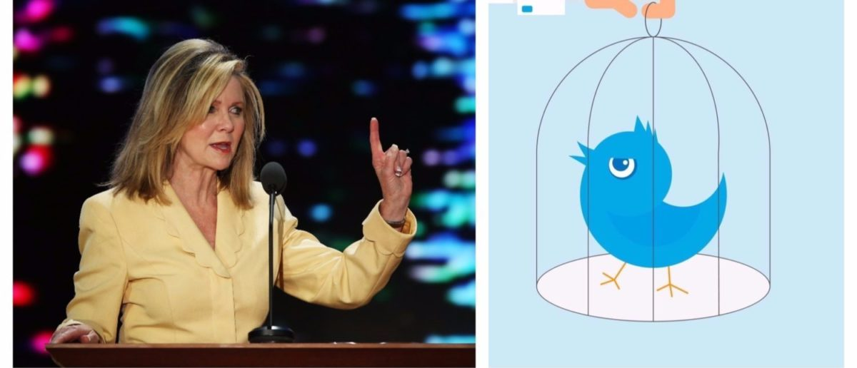 Left: TAMPA, FL - AUGUST 28: U.S. Rep. Marsha Blackburn (R-TN) speaks during the Republican National Convention at the Tampa Bay Times Forum on August 28, 2012 in Tampa, Florida. (Photo by Mark Wilson/Getty Images) Right: Human hand holds a cage with blue angry bird. [Shutterstock - Julia Tim]