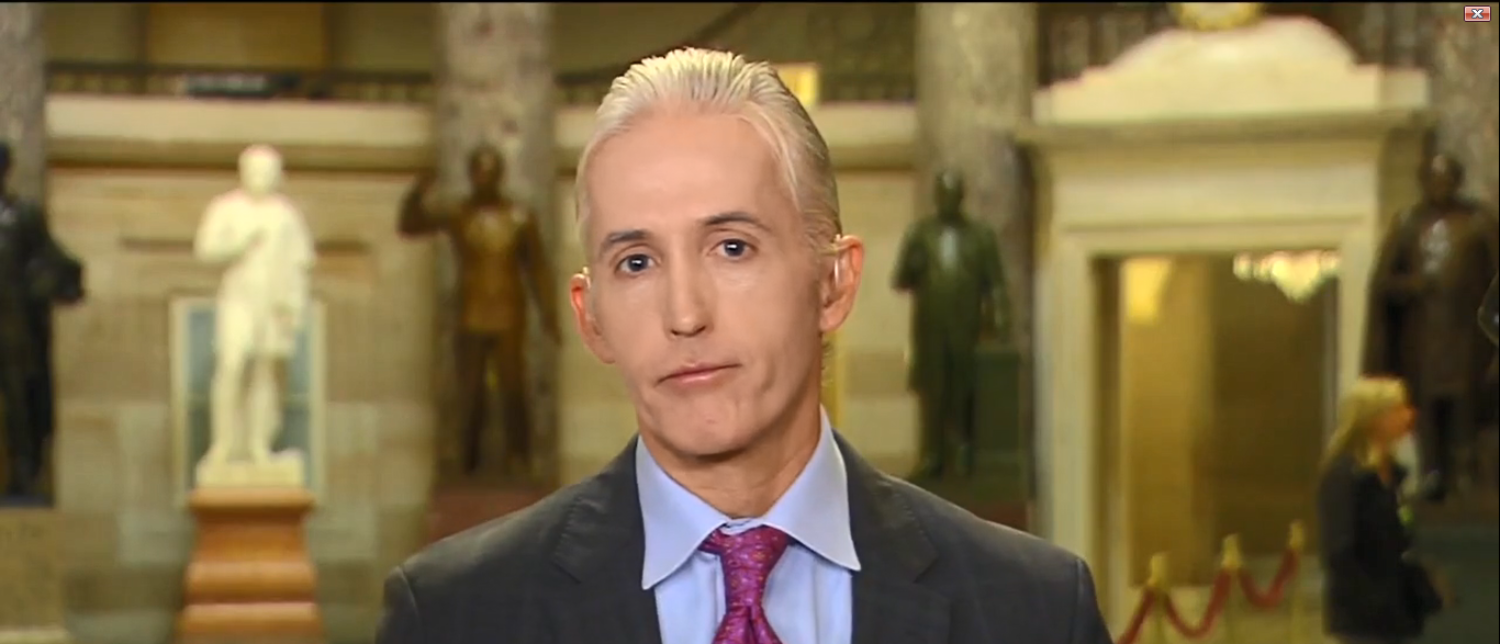Trey Gowdy Gives Mueller Vote Of Confidence 'America's Newsroom' 10-25-17 (Screenshot-Fox News)
