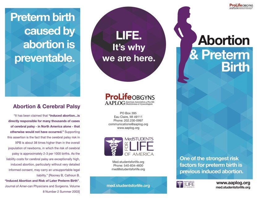 Pro-life information pamphlet (Source: Students for Life of America)