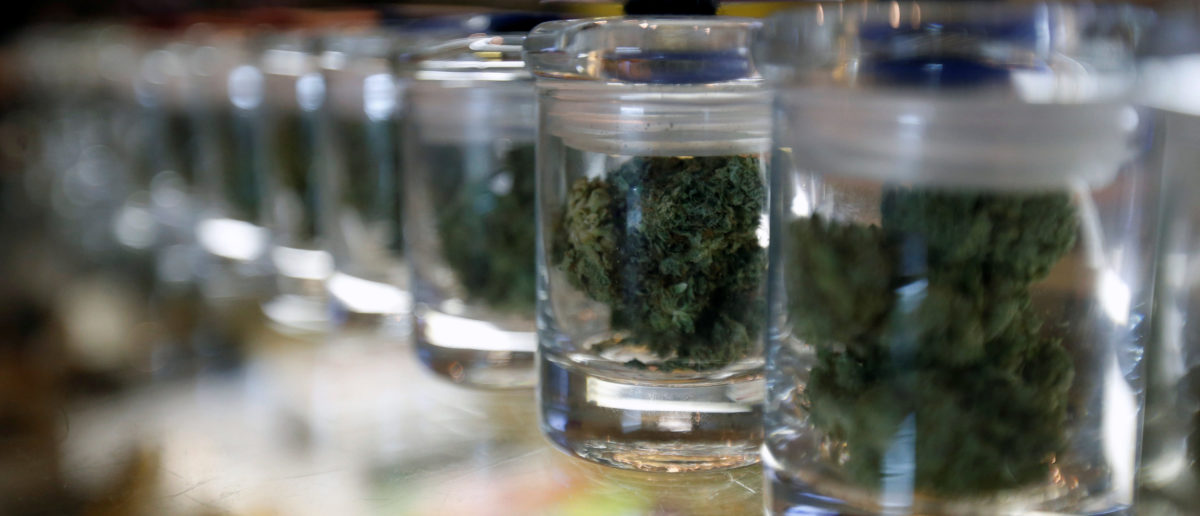 A variety of medicinal marijuana buds in jars are pictured at Los Angeles Patients & Caregivers Group dispensary in West Hollywood October 18, 2016. Picture taken October 18, 2016. REUTERS/Mario Anzuoni
