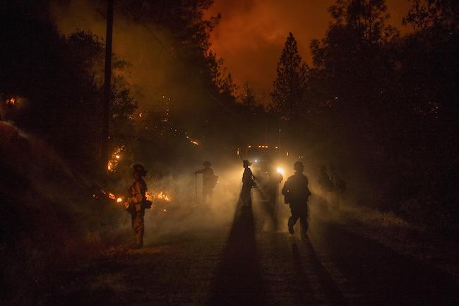 Firefighters light a backfire while battling the Butte fire near San Andreas, California September 12, 2015. REUTERS/Noah Berger
