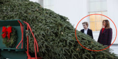 What Melania, Barron Trump Wore To Accept The White House Christmas Tree Will Get You In The Spirit