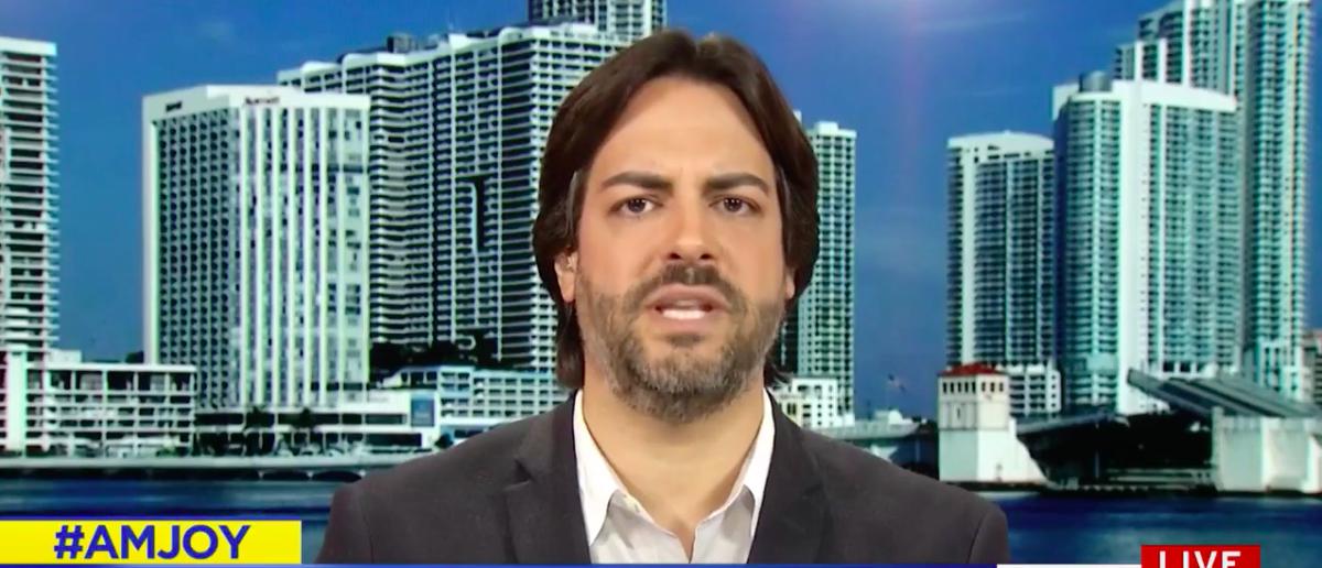 Screen Shot Fernand Amandi (MSNBC: Nov 26, 2017)