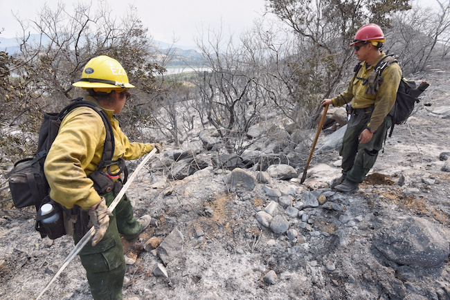 United States Forest Service firefighters retrieve hose as they work on extinguishing hot spots of the Whittier fire along Highway 154 near Cachuma Lake, California, July 10, 2017. Mike Eliason/Santa Barbara County Fire/Handout via REUTERS