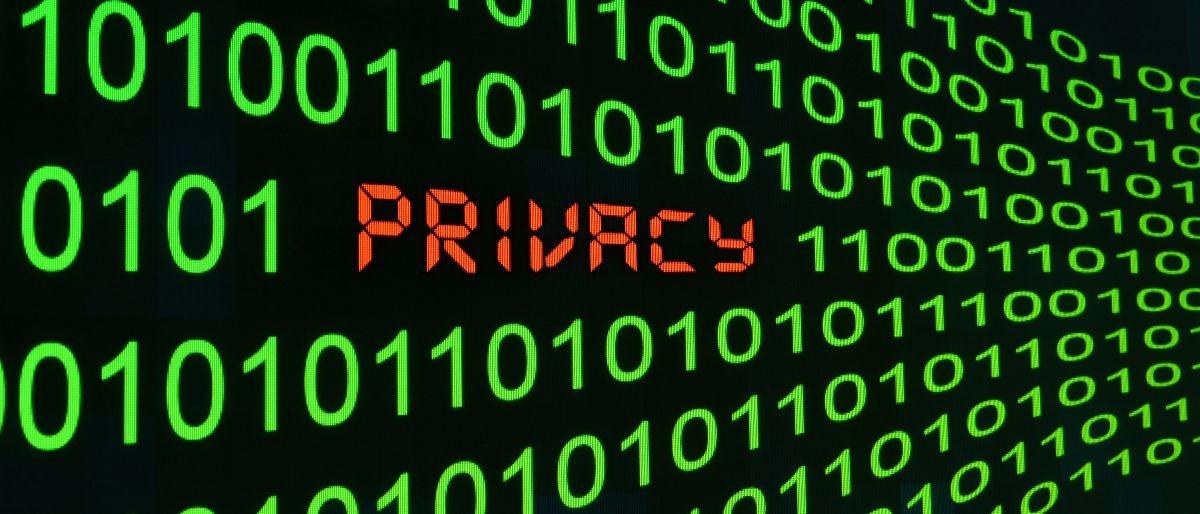 data privacy Shuterstock/alexskopje