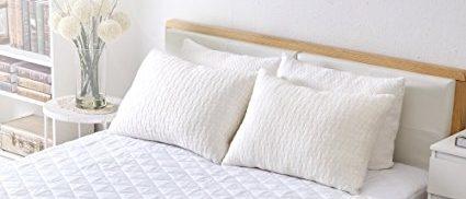 Sable pillows (Photo via Amazon)
