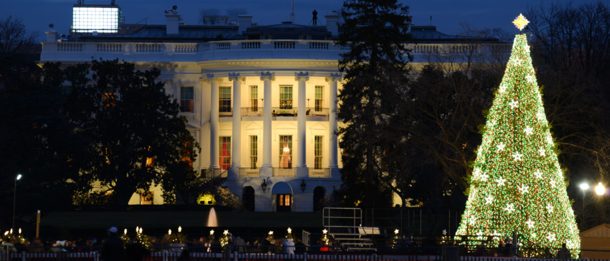 The White House in Christmas - Washington DC, United States Shutterstock/ Orhan Cam