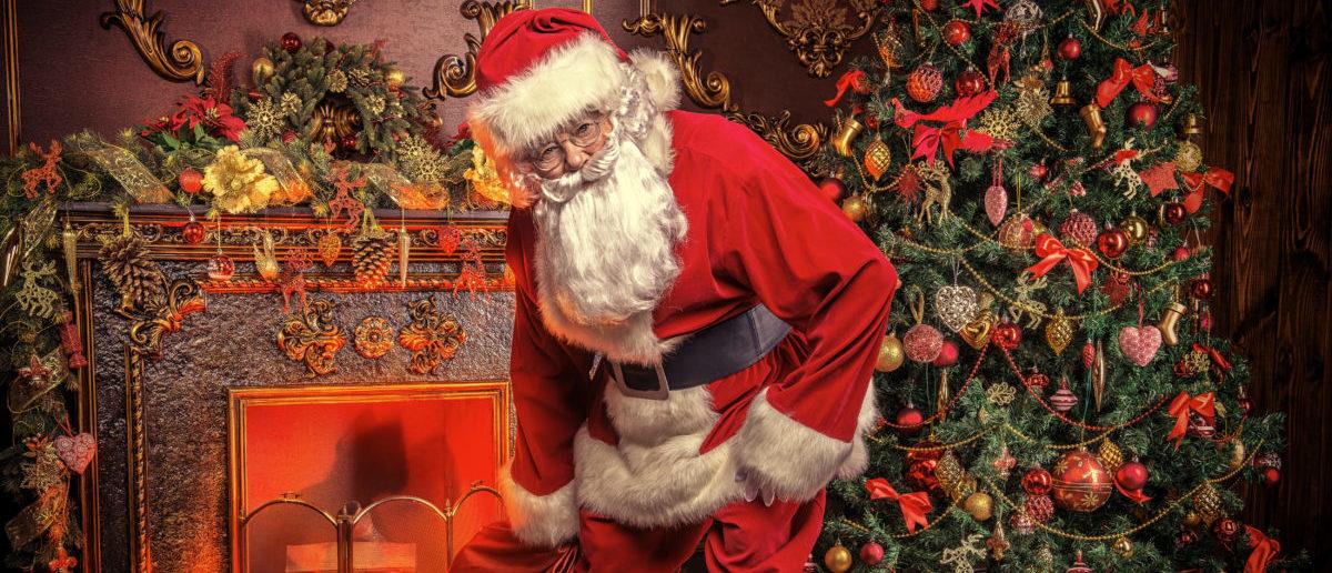 Santa Claus (shutterstock/ Kiselev Andrey Valerevich)