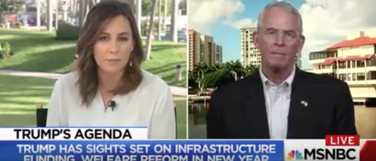 MSNBC's Hallie Jackson interviews Florida Rep. Francis Rooney. (Youtube screen grab)