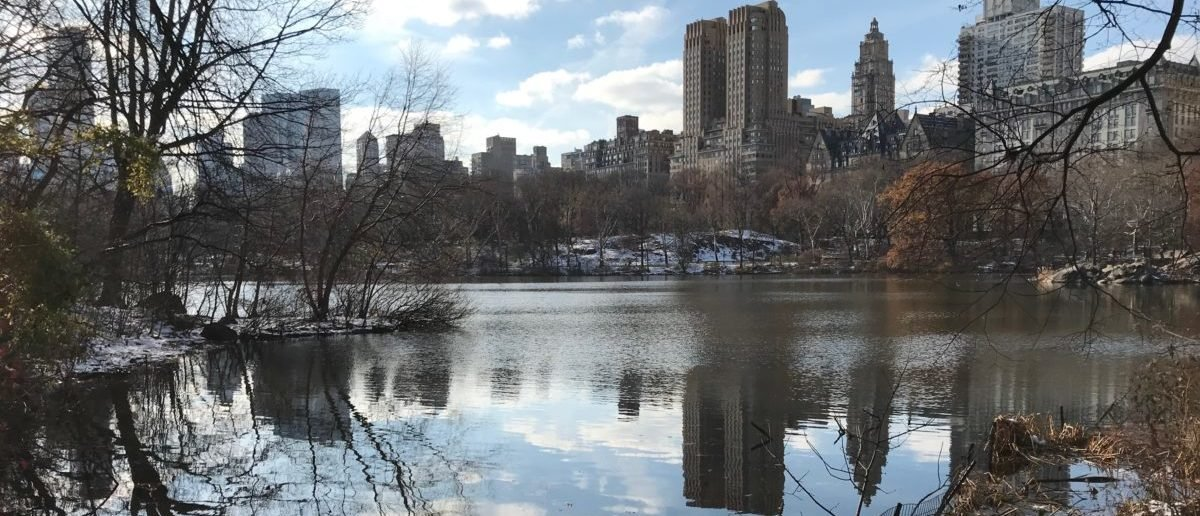 Here is the Lake in Central Park in New York City. (DCNF/Ethan Barton)