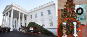 The First Thing You See When You Enter The Trump White House For Christmas Sends A Powerful Message [PHOTOS]