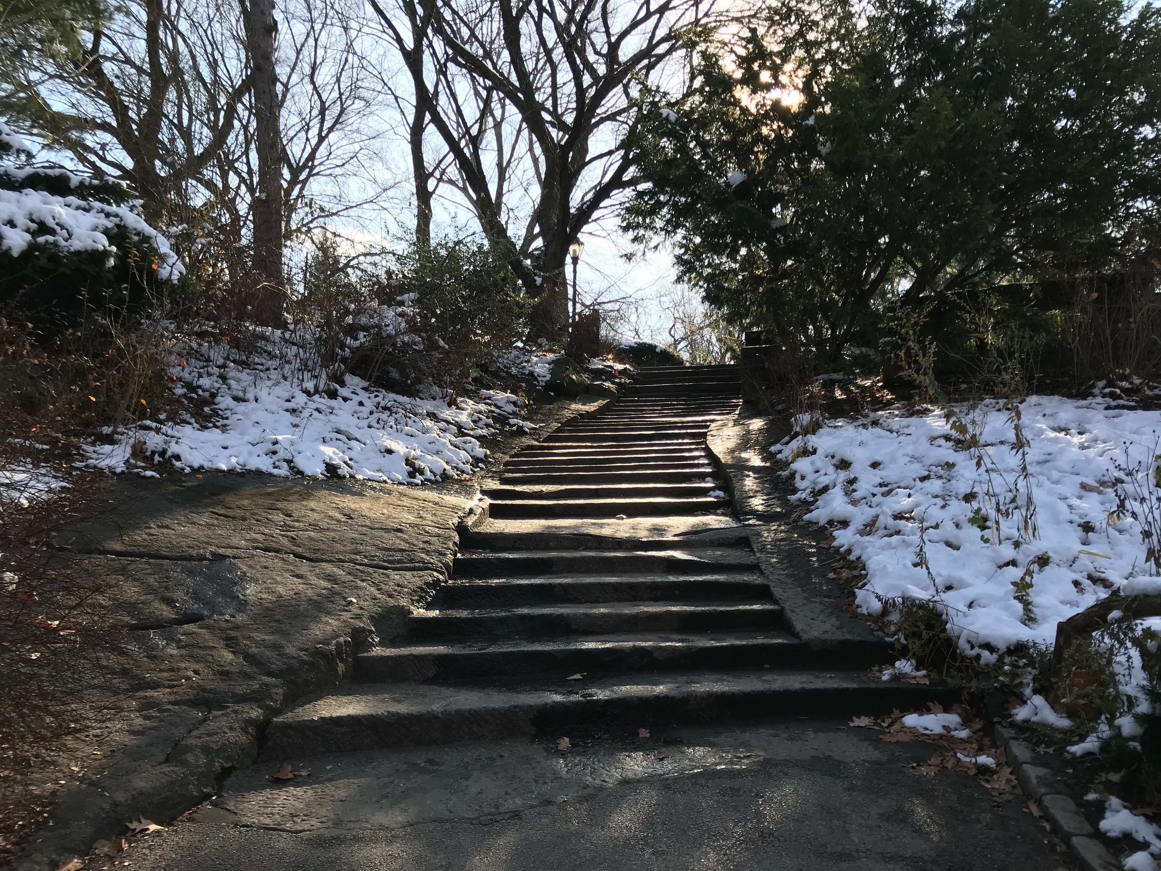 A stairway in the Shakespeare Garden in Central Park in New York City. (DCNF/Ethan Barton)
