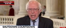 Bernie Sanders MSNBC screenshot