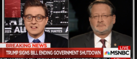 MSNBC's Chris Hayes Manhandles Liberal Senator For Reopening Government [VIDEO]