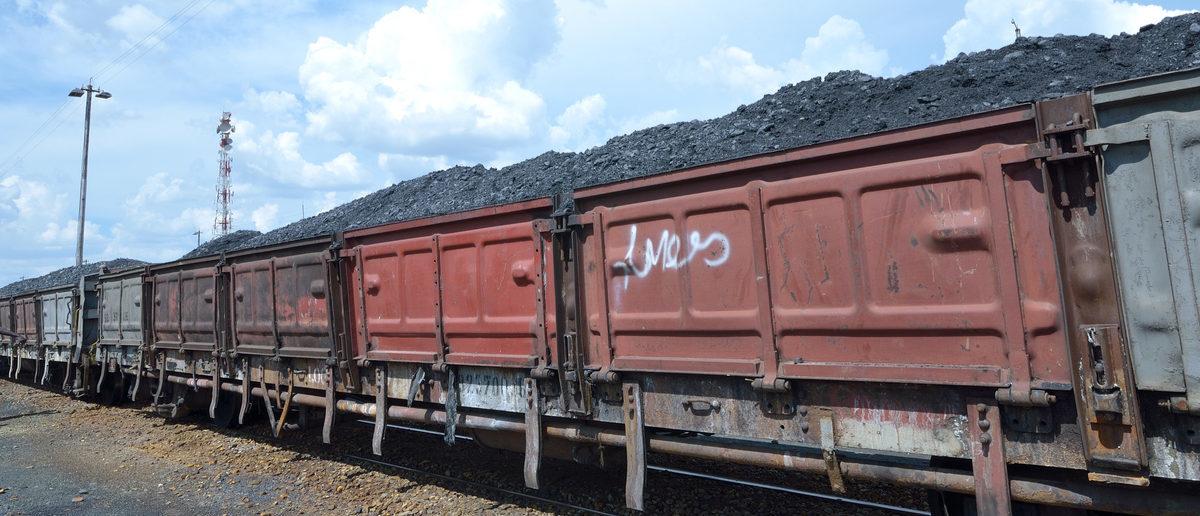 Coal train (Shutterstock/afric924)