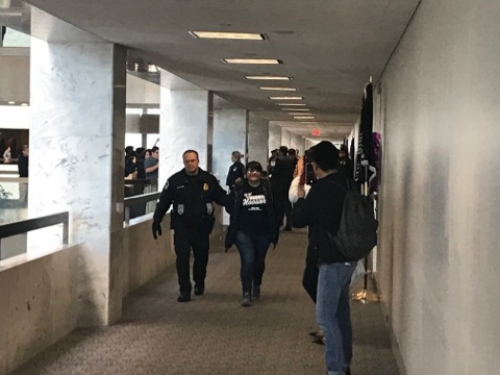 DREAMer Protest/ Senate Hart Building/ by the Daily Caller News Foundation