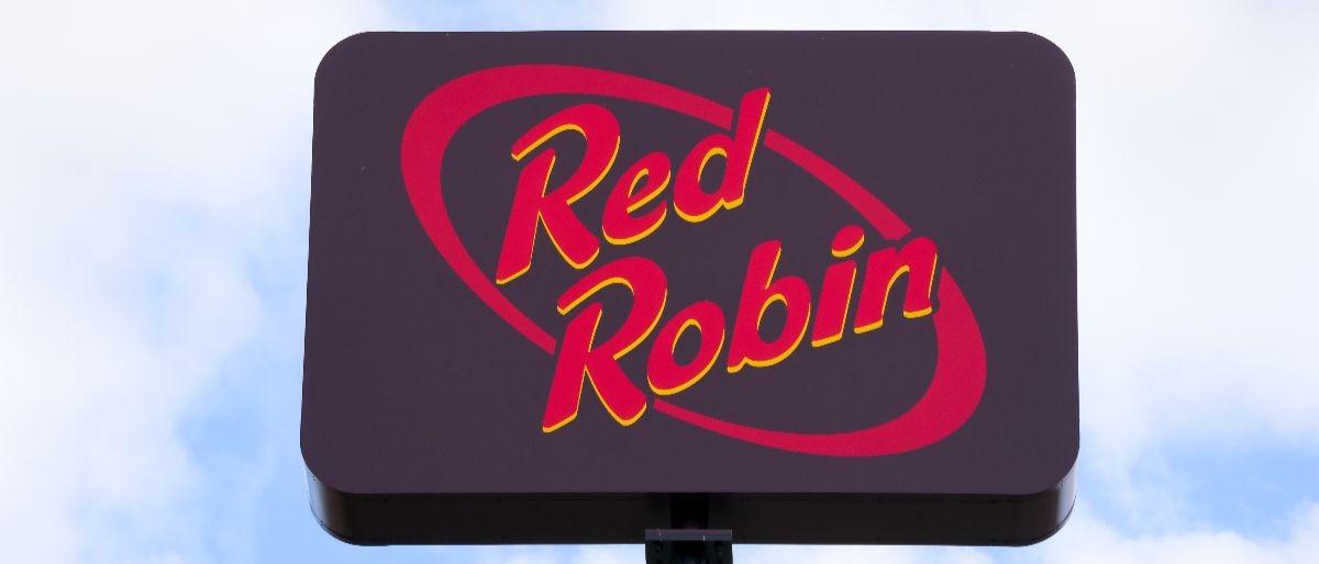 Red Robin Shutterstock/Ken Wolter