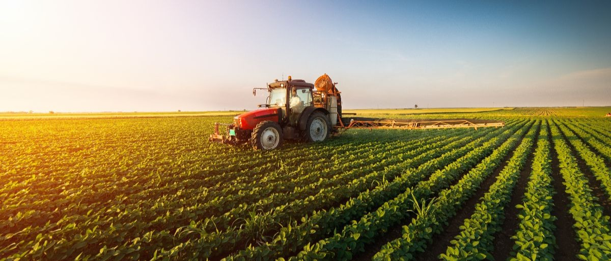 farm Shutterstock/Fotokostic