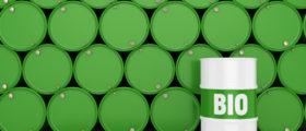 3D rendering green barrels for biofuels with lettering. (Shutterstock/Aleksandr Petrunovskyi)