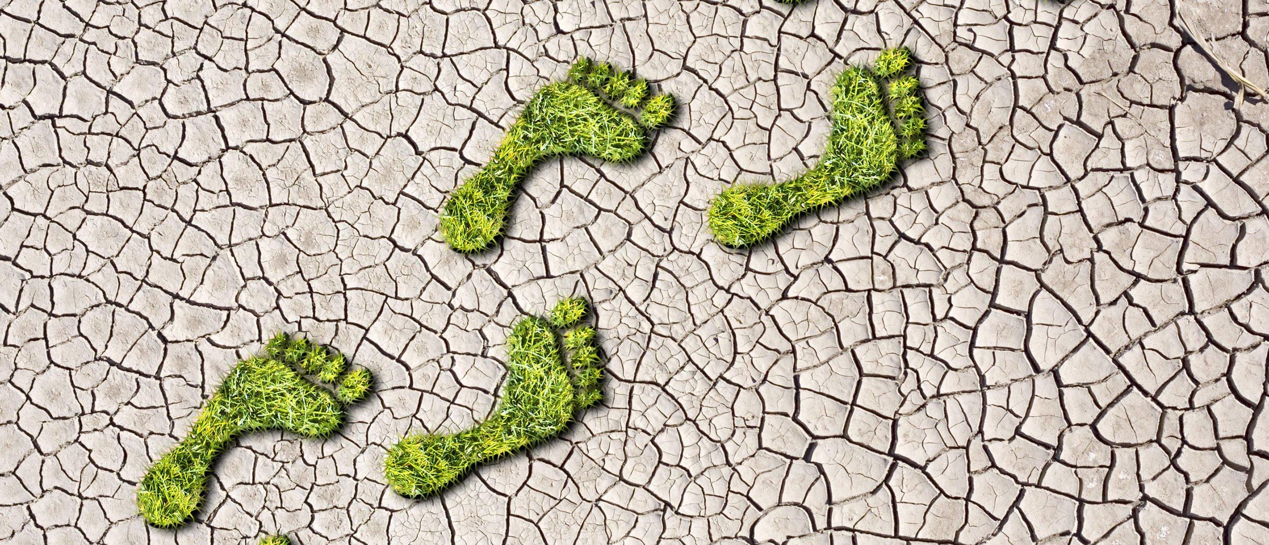 A carbon footprint. Shutterstock