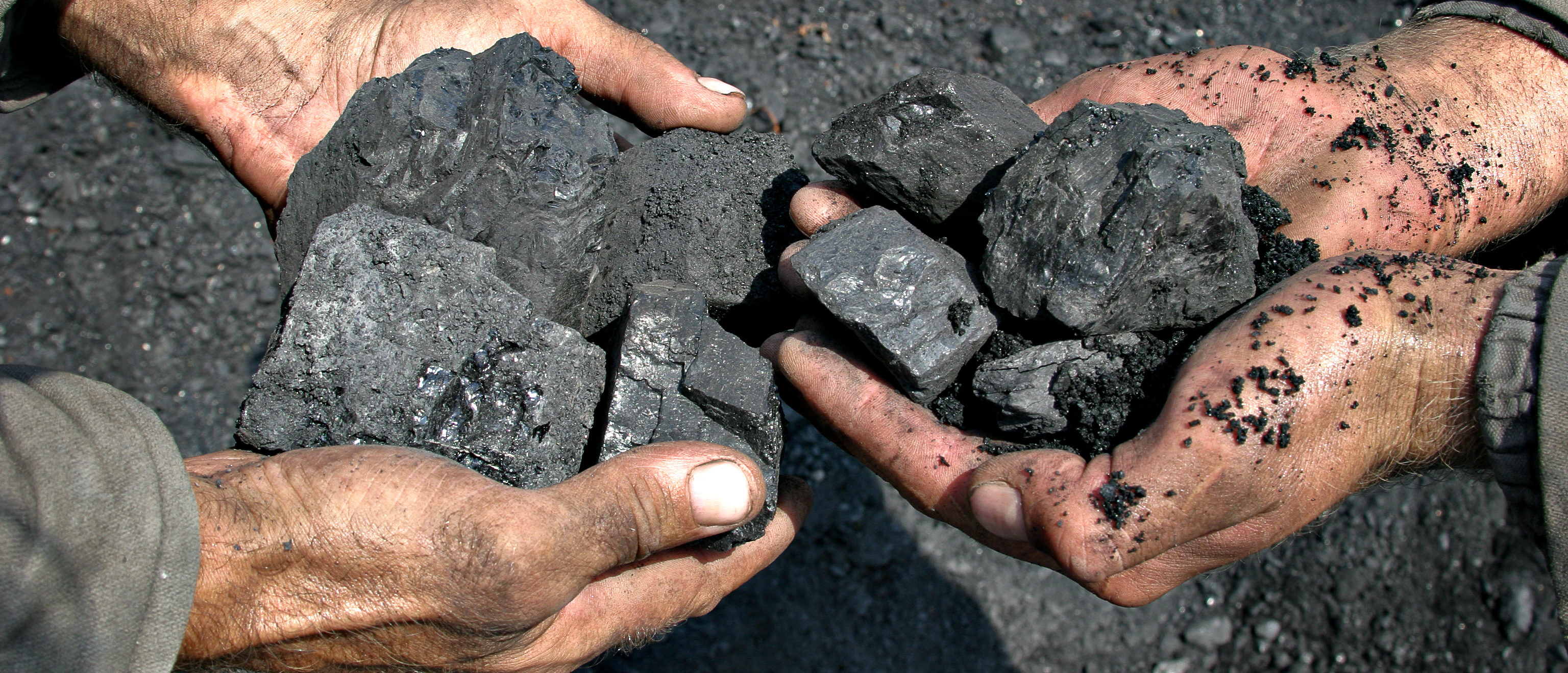 Coal in the hands of miners. (Shutterstock)