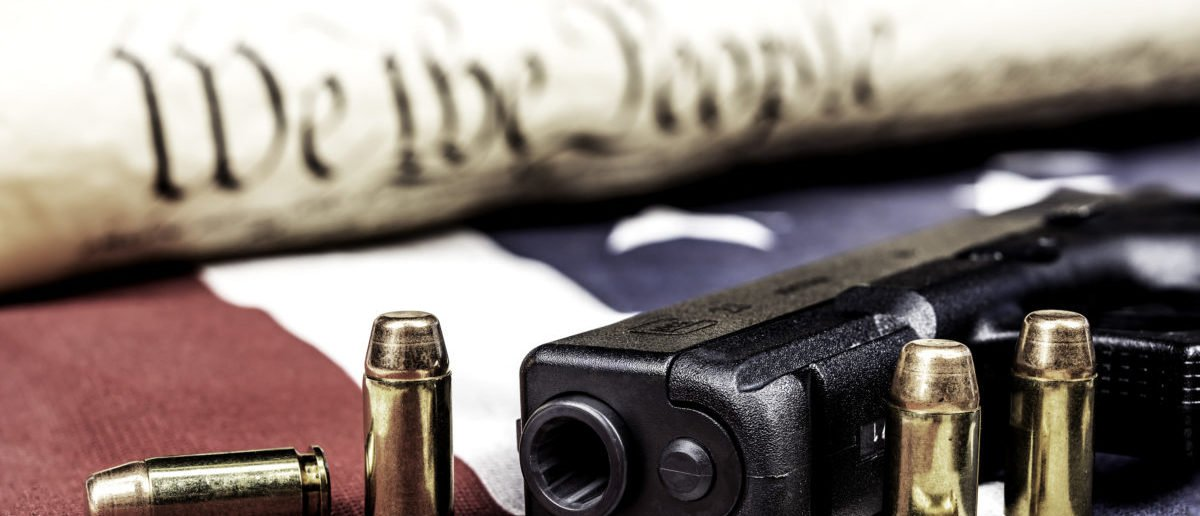 Gun and the constitution - ShutterStock