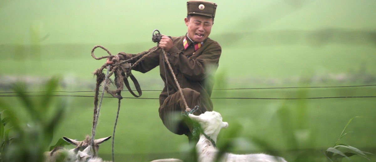 A North Korean soldier kicks a goat on the banks of the Yalu River near the North Korean town of Sinuiju, July 5, 2009. North Korea fired seven ballistic missiles on Saturday, South Korea's defence ministry said, in an act of defiance towards the United States on its Independence Day that further stoked regional tensions. REUTERS/Jacky Chen