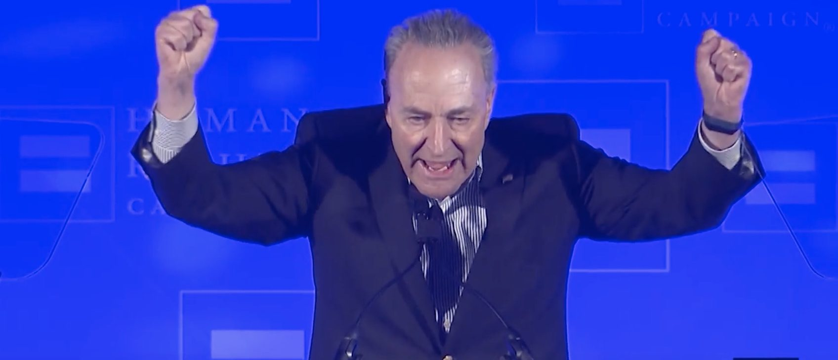 Senate Minority Leader Chuck Schumer speaks at a Human Rights Campaign event February 3, 2018. (Photo: Screenshot/Human Rights Watch/YouTube)